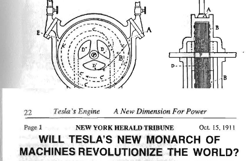 turbinatesladettaglioe.jpg