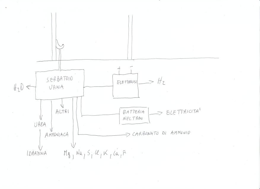 primo_schema_trattamento_urina.jpg